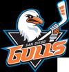 sponsor_Gulls_100x104